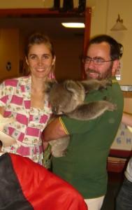 patting a koala!